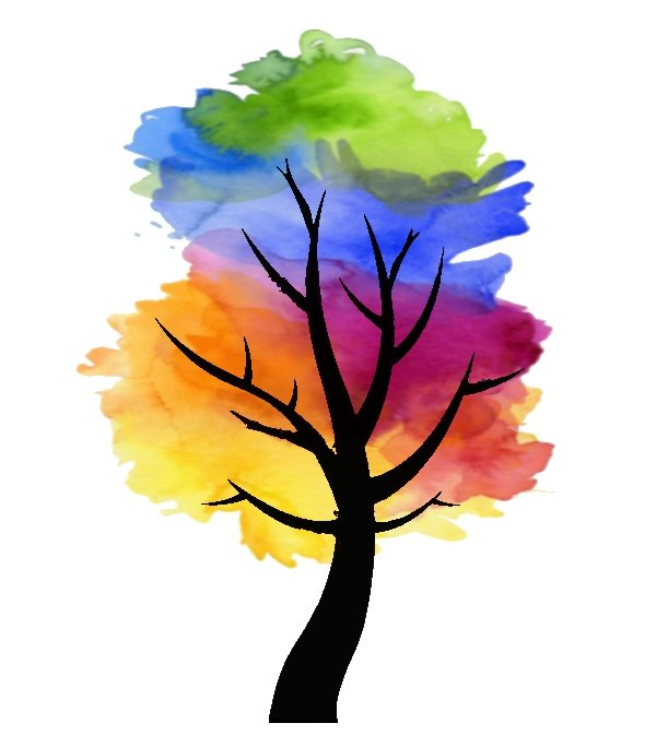 Foto van een kleurenboom